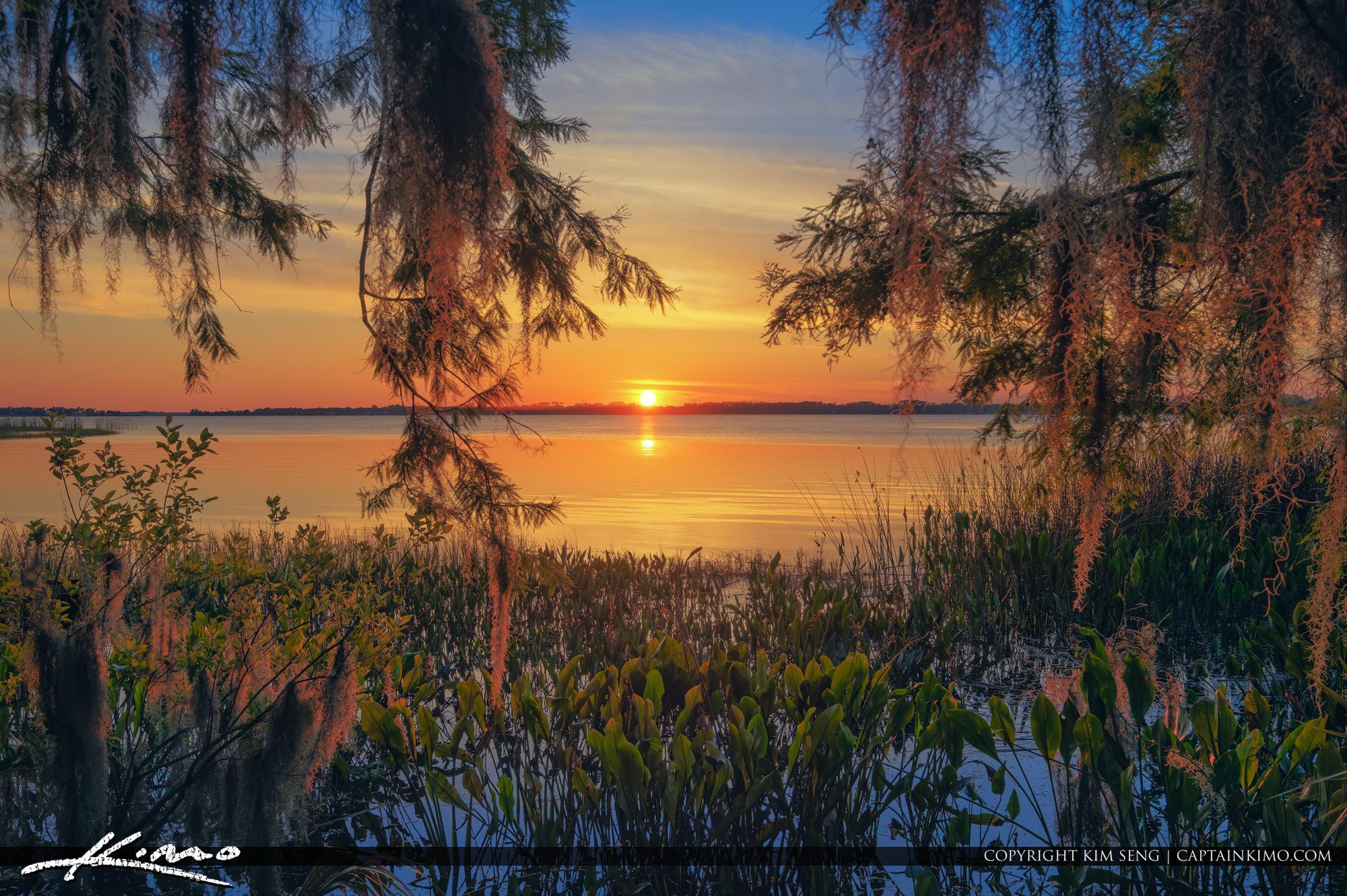 Mount Dora Florida Sunset Lake Dora Spanish Moss