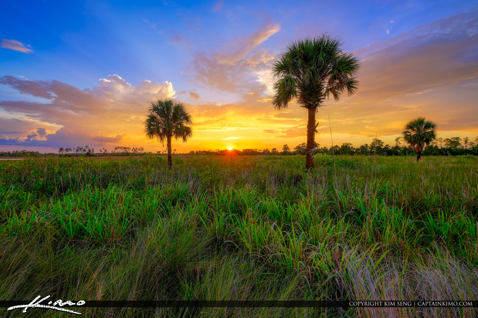 Florida Landscape Sunset Wetlands Jupiter Farms Northern Palm Beach
