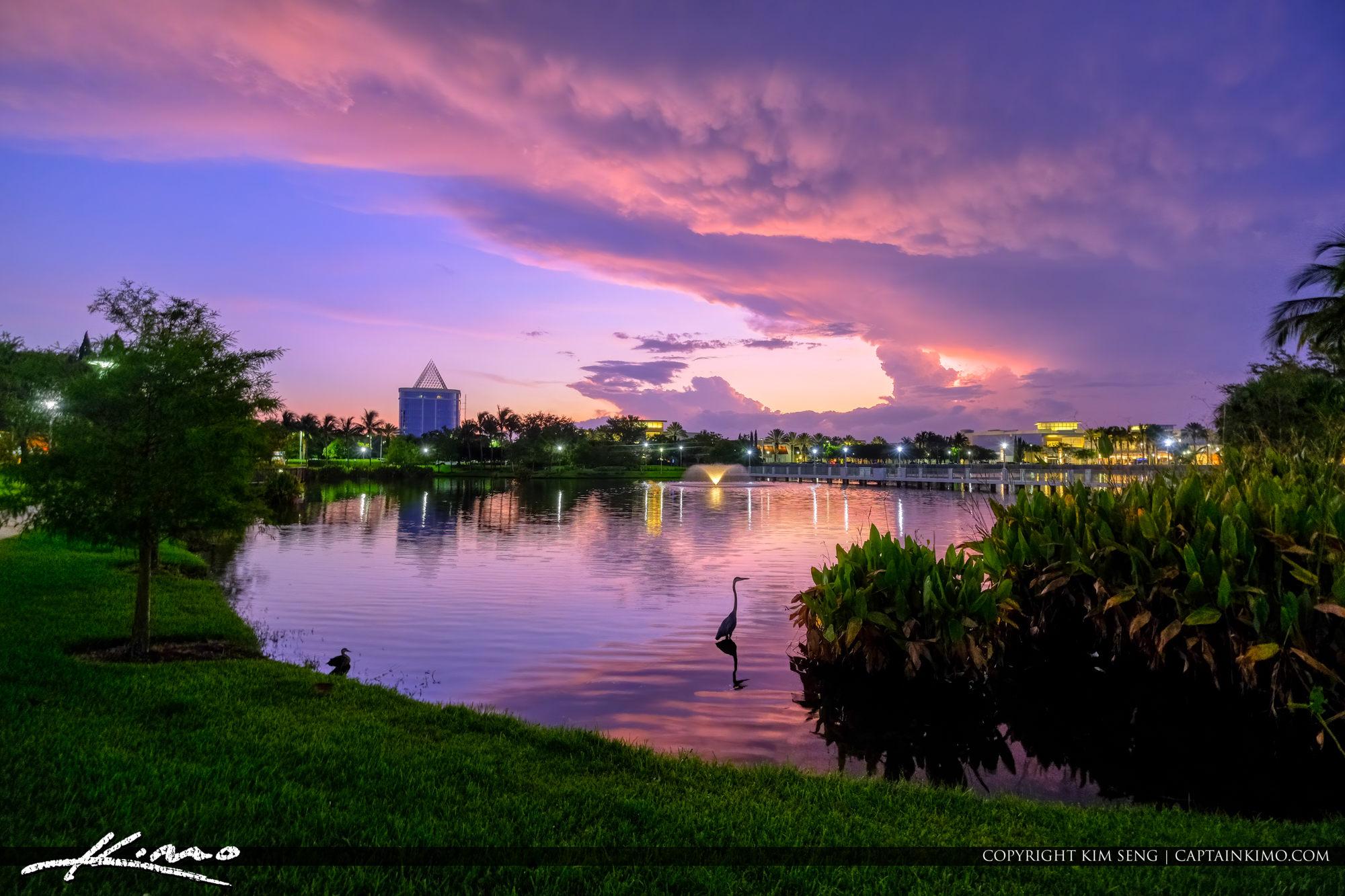 Downtown at the Gardens Lake Sunset Heron