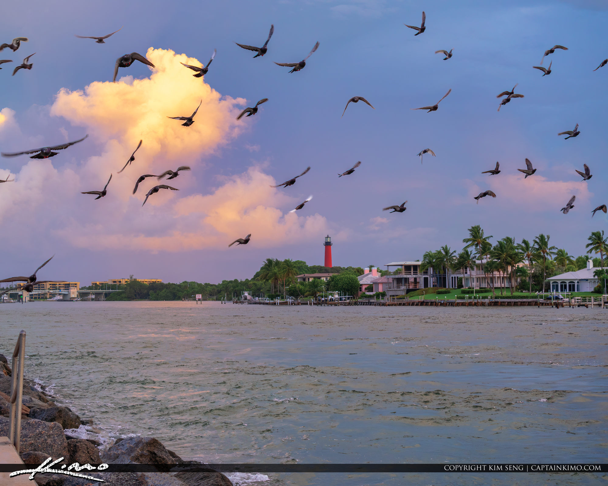Pigeons Jupiter Inlet Lighthouse at Inlet