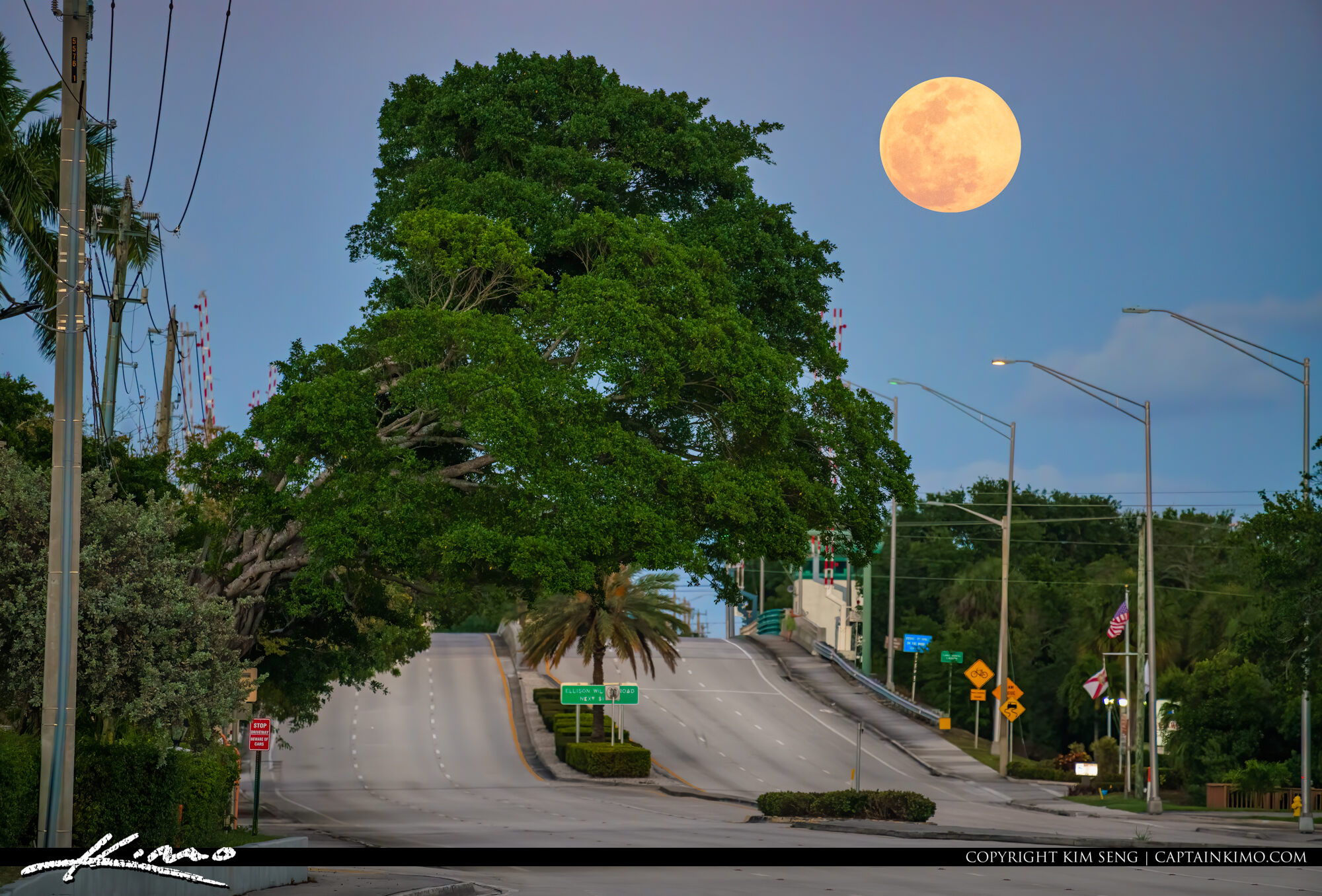 PGA Blvd Full Moonrise Palm Beach Gardens