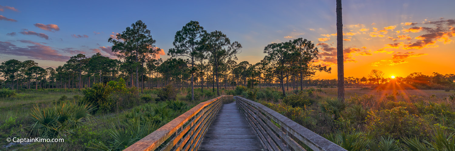 Sweetbay Natural Area Palm Beach Gardens Sunset Boardwalk