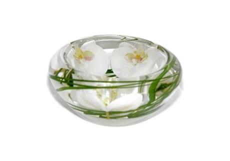 White Phalaenopsis Disk T-Light