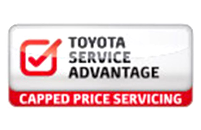 Toyota Assistance