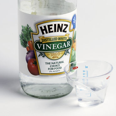 water and vinegar solution