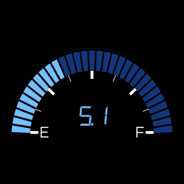 VW Fuel