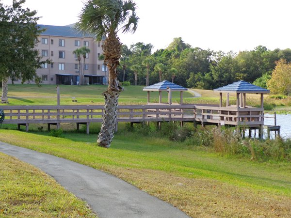 Spring Haven Retirement Winter Haven Assisted Living