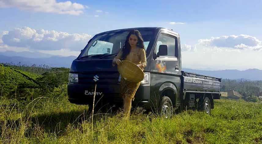 New Suzuki Carry