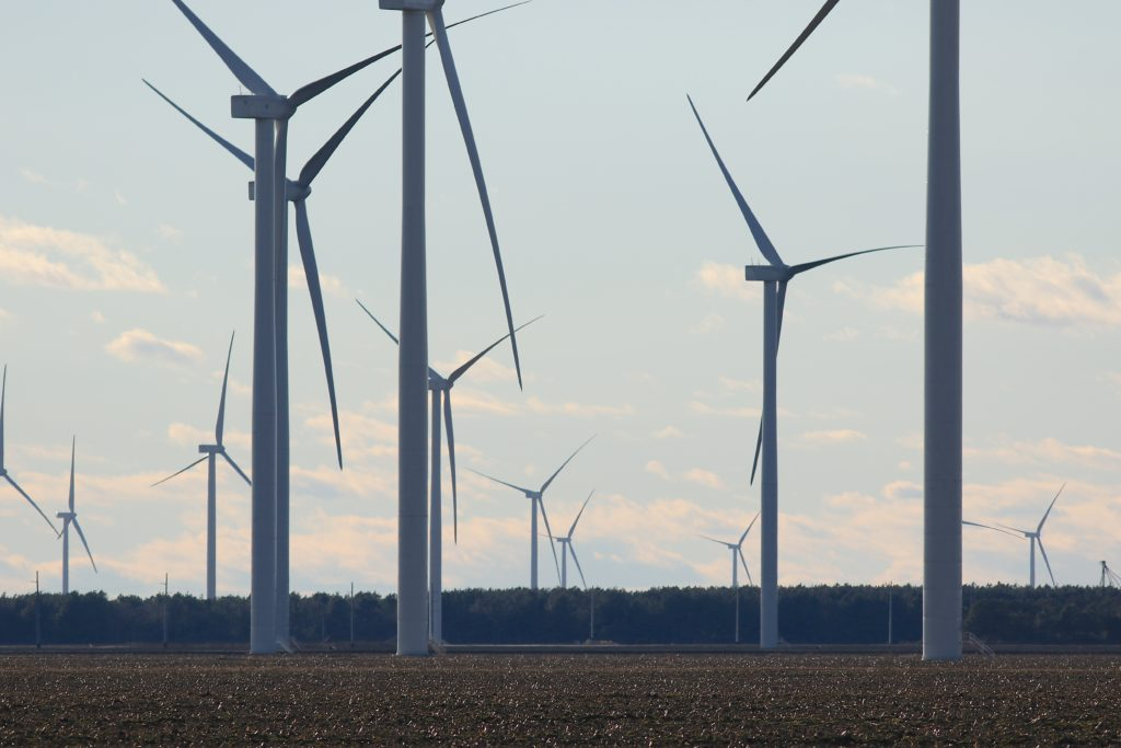 Part of the array of turbines at the Amazon Wind Farm. (CJ photo by Don Carrington)