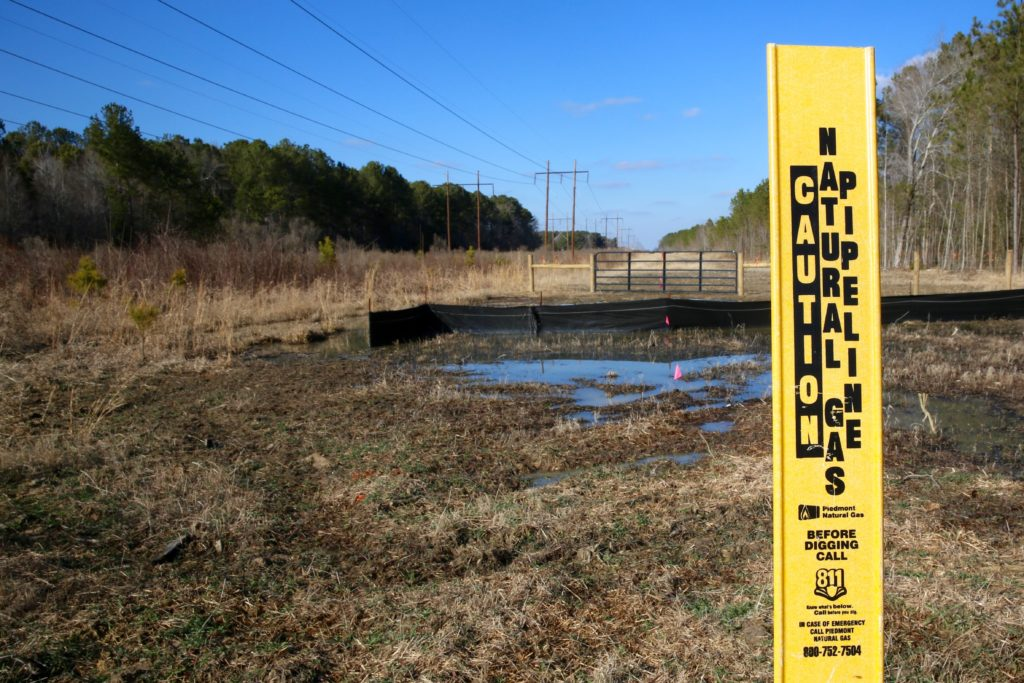 A Dominion Energy spokesman told Carolina Journal roughly 85 percent of the Atlantic Coast Pipeline will traverse existing utility right-of-way, including this area in Halifax County. (CJ photo by Don Carrington)