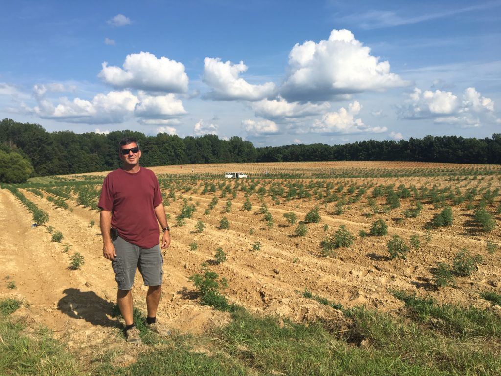 Shane Whitaker of Climax began farming hemp this year, after the crop was legalized by the federal government in 2018. (CJ photo by Brooke Conrad)