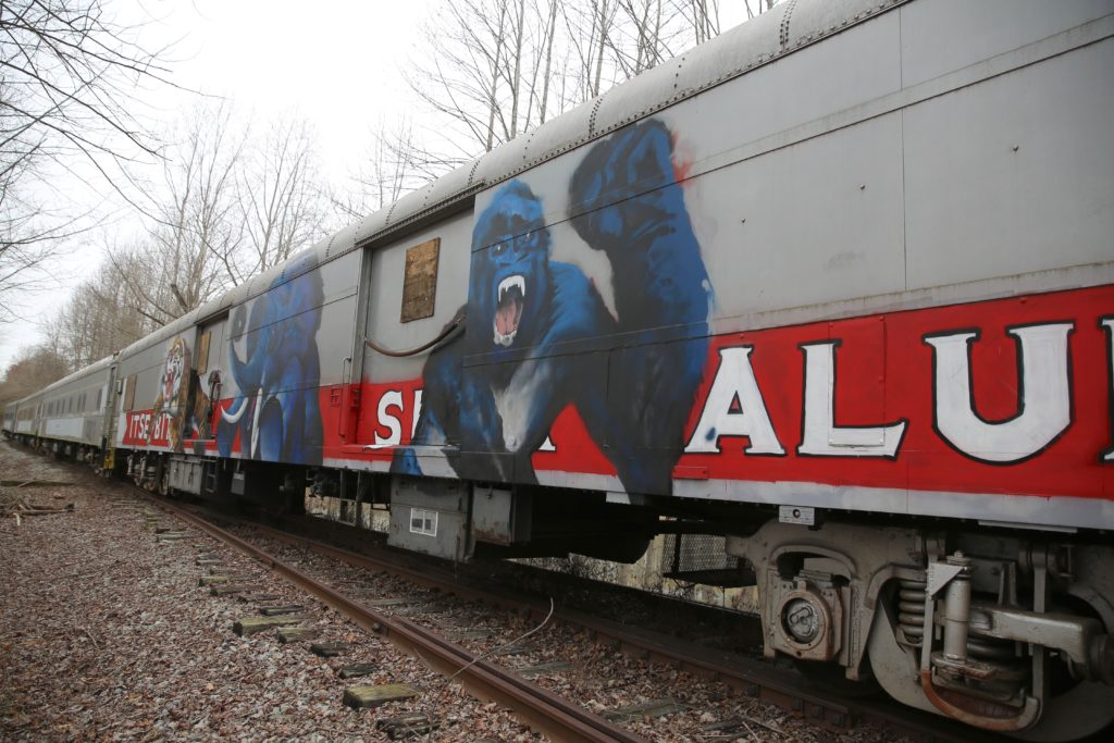 Images of circus attractions remain visible on the rail cars NCDOT bought and stored in Nash County. (CJ photo by Don Carrington)