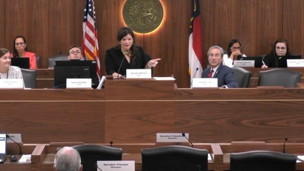 Sen. Deanna Ballard, R-Watauga, chairs a Senate committee meeting.