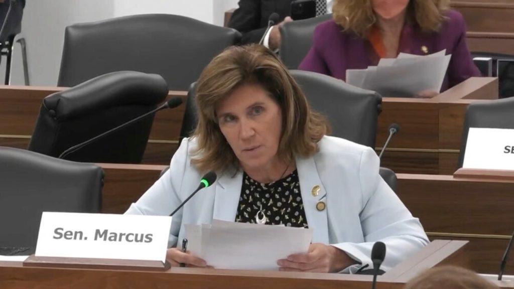 Sen. Natasha Marcus, D-Mecklenburg (Image from YouTube)