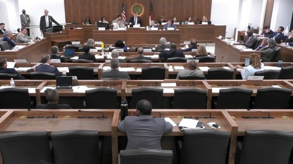 The House and Senate redistricting committees meet in a joint session. (Image from YouTube)