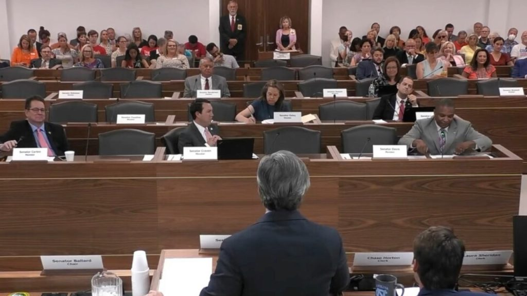 Sen. Michael Lee, R-New Hanover, chairs a Senate education committee meeting. (Image from YouTube)