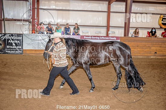 05-01-21 Walking Horse Owners Association