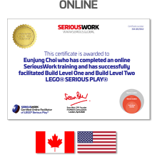 Online LEGO® Serious Play® Facilitator Training US - Full Fee + Book Download & LEGO Bricks