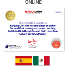 Online LEGO® Serious Play® Facilitator Training ES-MX - Full Fee + Books Download & LEGO Bricks