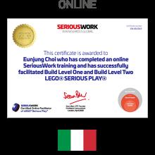 Online LEGO® Serious Play® Facilitator Training IT - la quotazione + i libri & i kit LEGO