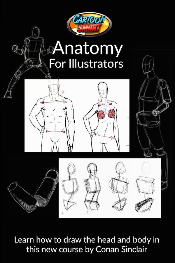 Anatomy for Illustrators Video Tutorials