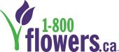 1-800-FLOWERS.ca store logo