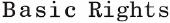 Basic Rights store logo