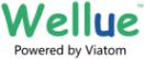 Wellue store logo