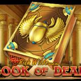🥇🥈🥉 Book Of Dead Gratis [2019] 🤑