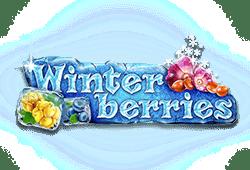 Winter Berries kostenlos spielen   Online-Slot.de