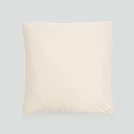 Statement Canvas Pillow Cover & Insert 18x18