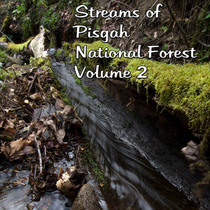 Streams of Pisgah National Forest, Vol. 2 by David Bunch
