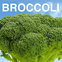 Broccoli (Instrumental) [Cover] by Viral Stars