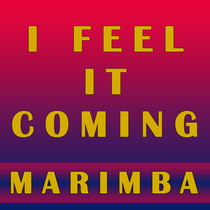 I Feel It Coming (Marimba Remix) [Cover] by Viral Stars