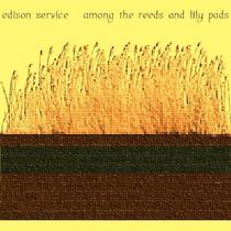 Among the Reeds and Lily Pads by Edison Service
