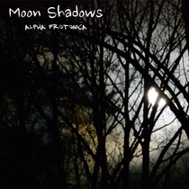 Moon Shadows by Alpha Protonica