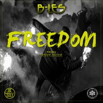 Freedom (feat. DeAnne Brodie) by B-Les