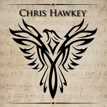 Good Liar by Chris Hawkey