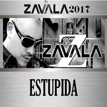 Estupida by El Zavala