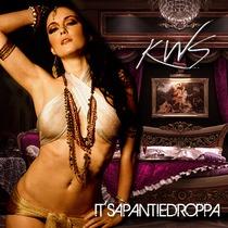 It's a Pantie Droppa (feat. Kurt Stevens) by DJ Tranz