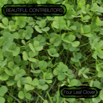 Four Leaf Clover by Beautiful Contributors