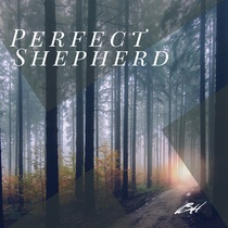 Perfect Shepherd by Baily Hager