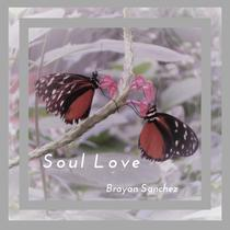 Soul Love (Radio Version) by Brayan Sanchez