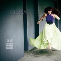 Elevate by Erica Greenfield