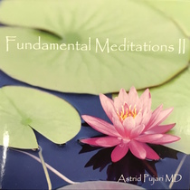 Fundamental Meditation, Vol. 2 by Astrid Pujari, MD