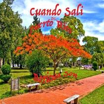 Cuando Sali de Puerto Rico (feat. Luis Funky Marrero) by Boricuason