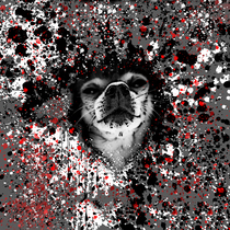 Splatter Hound by Beast