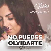No Puedes Olvidarte de Mi (feat. Yowan & Javy) by Lester