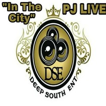 In the City by PJ Live
