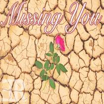 Missing You by Everyday Ritual
